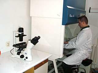 pracownia hodowli komórkowej